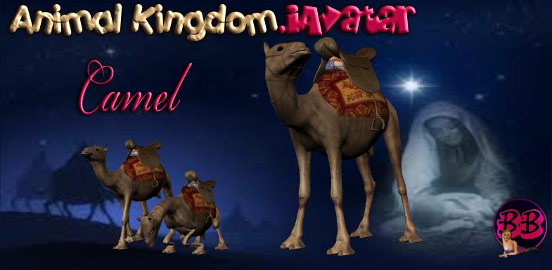 Holy Night Camel Animal - Reallusion Marketplace